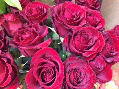Розы №3