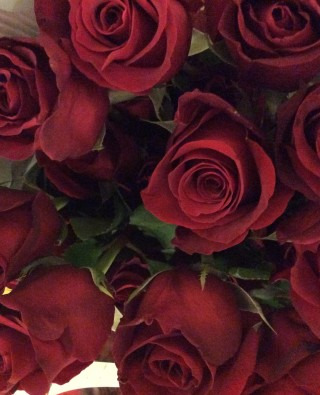 Розы №30