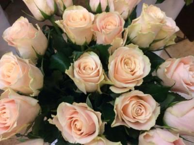 Розы №33
