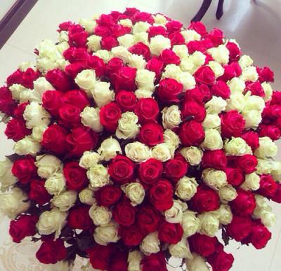 Розы по супер цене!!!