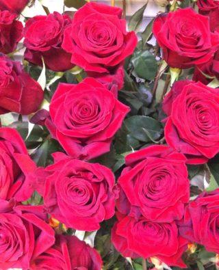 Розы №44