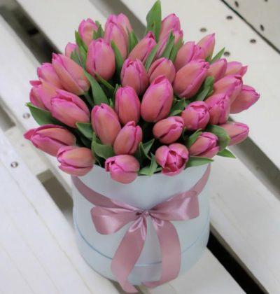 Фан-Фан тюльпан